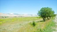 Пейзаж вдоль дороги