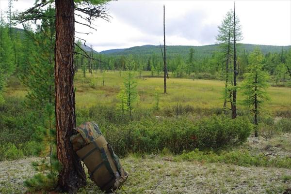 Прекрасный пейзаж с болотцем и рюкзаком